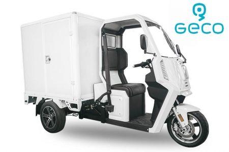 Voiture électrique Geco Truck XC 3kW