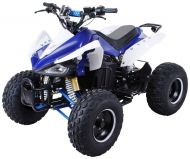 QUAD ATV electrique 1000w 48v speedy-S14