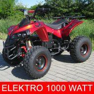 QUAD ATV 1000w S-10 rando grand modéle marche arriere 2 vitesses